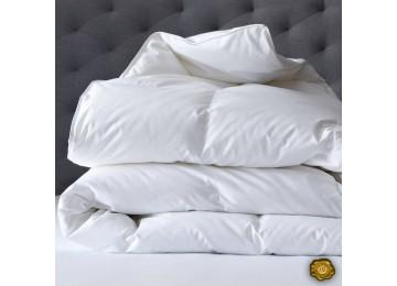 Одеяло силиконовое микрофибра 2,0 (0049) Еней-Плюс белое